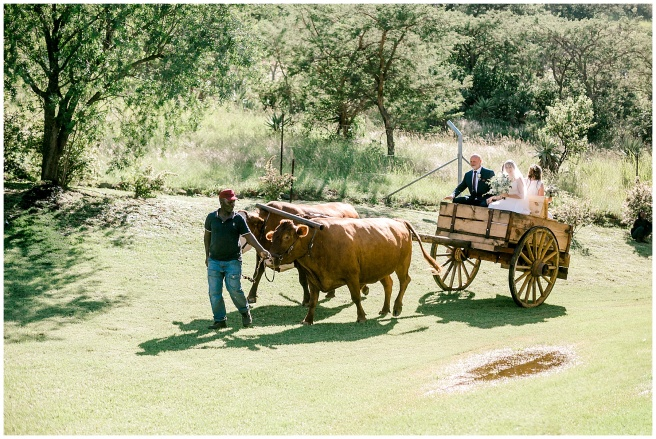 bruce-amy-gibbings-summer-farm-wedding-ladysmith-south-africa-long-exposure-photographer_0073